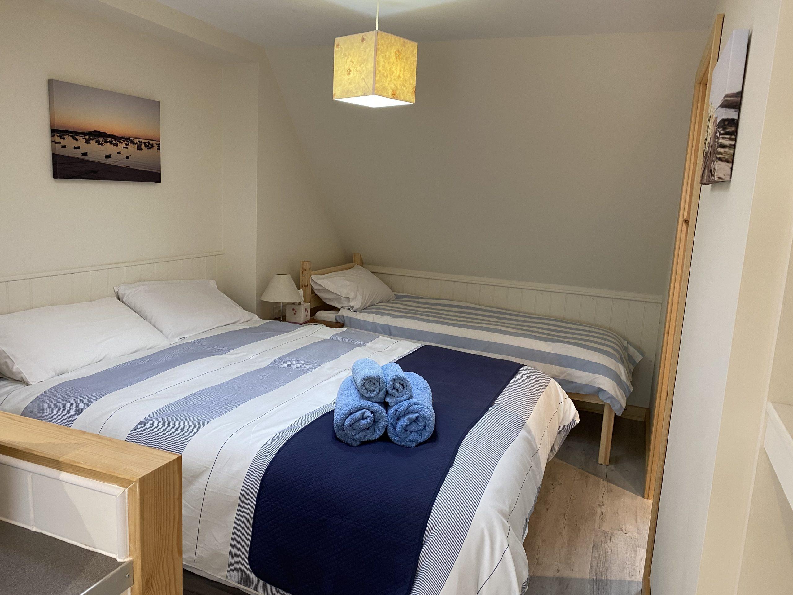 Sea Holly bed area