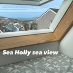Sea Holly View